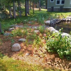 shoreline-garden
